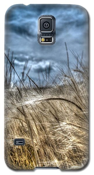 Whisper From Above  Galaxy S5 Case by Kevin Bone