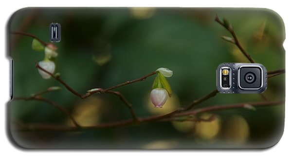 Galaxy S5 Case featuring the photograph Whispers Of Spring In The Tranquil Forest by Lisa Knechtel