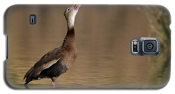 Whistling Duck Whistling Galaxy S5 Case by Bryan Keil