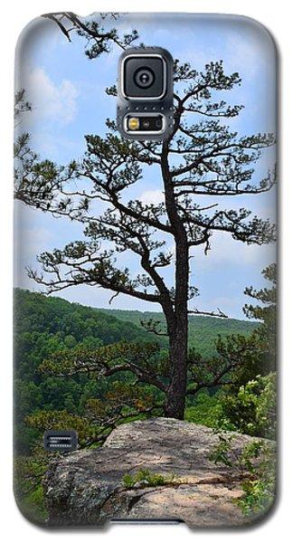 Whitaker Point Trail Galaxy S5 Case