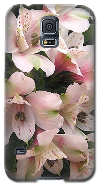 White And Pink Peruvian Lilies Galaxy S5 Case by Diane Alexander