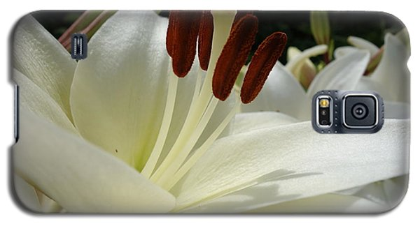 White Asiatic Lily Galaxy S5 Case