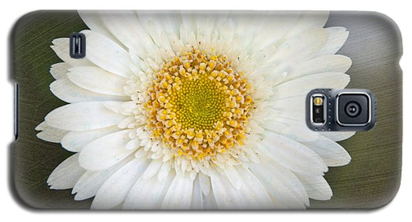 White Bergera Daisy 1 Galaxy S5 Case by Sally Simon