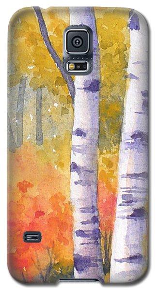 White Birches In Autumn Galaxy S5 Case