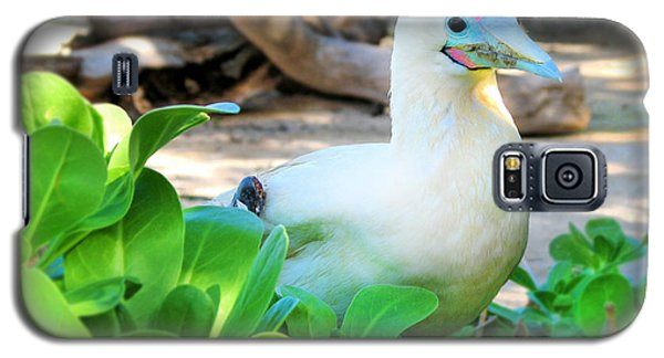Galaxy S5 Case featuring the photograph White Bird by Kristine Merc