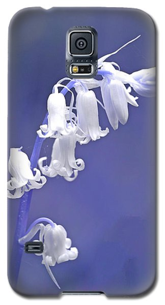 White Bluebell Galaxy S5 Case