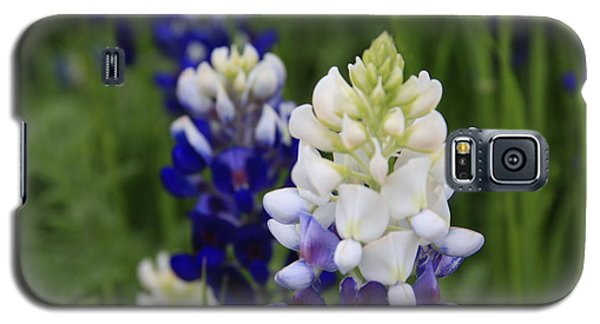 White Bluebonnet Galaxy S5 Case