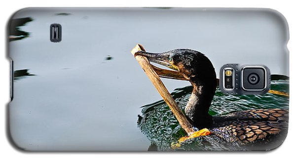 White Breasted Cormorant Galaxy S5 Case by Bonnie Fink