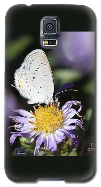 Galaxy S5 Case featuring the photograph White Butterfly by Chris Scroggins