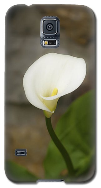 White Calla Lily 2 Galaxy S5 Case