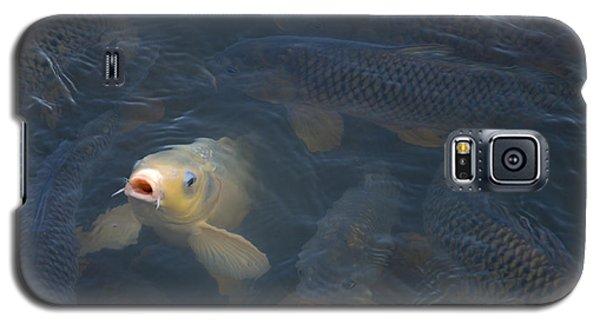 White Carp In The Lake Galaxy S5 Case
