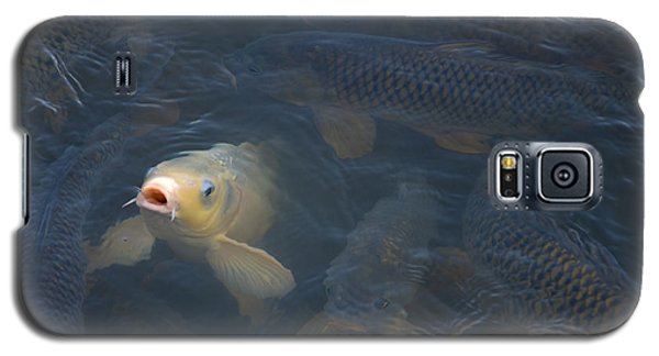 White Carp In The Lake Galaxy S5 Case by Chris Flees