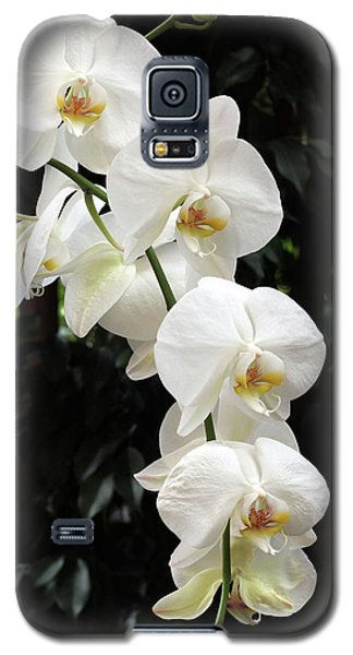 Galaxy S5 Case featuring the photograph White Cascade by Harold Rau