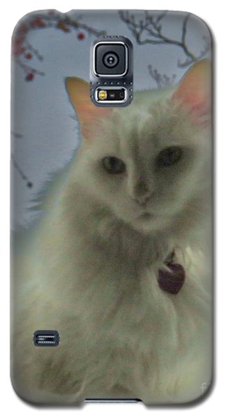 White Cat Dreams Galaxy S5 Case
