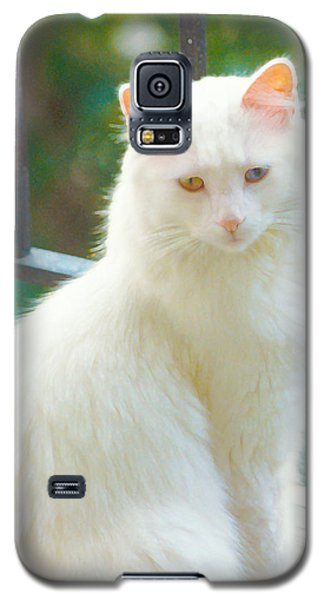 White Cat Galaxy S5 Case