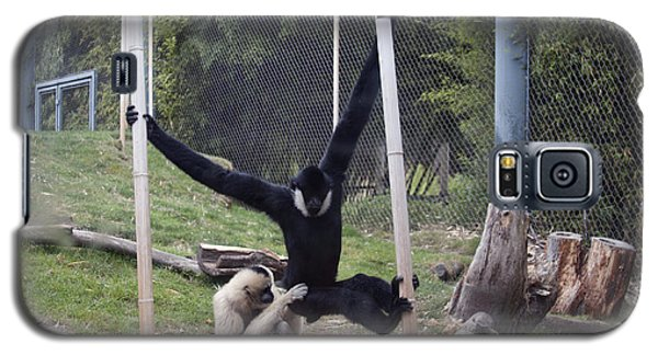 White-cheeked Gibbon - 0003 Galaxy S5 Case by S and S Photo