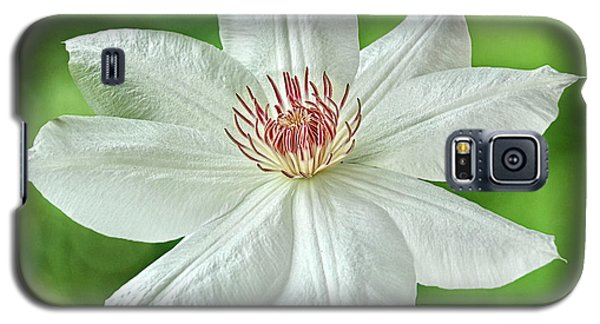 White Clematis Galaxy S5 Case
