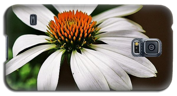 Galaxy S5 Case featuring the photograph White Coneflower by Al Fritz