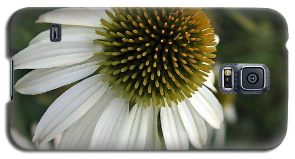 White Coneflower Galaxy S5 Case by Ellen Tully