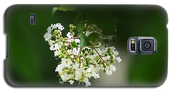 Galaxy S5 Case featuring the photograph White Crepe Myrtle Blossom by Suzanne Powers