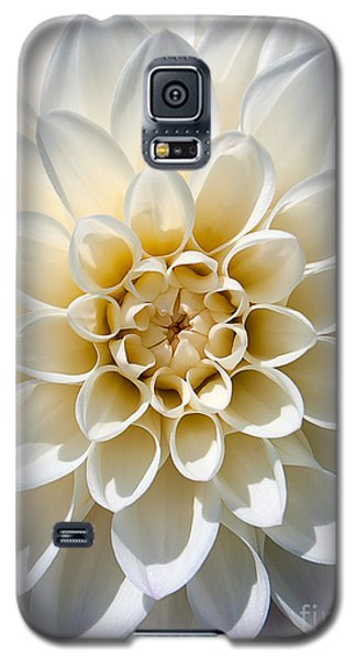 Galaxy S5 Case featuring the photograph White Dahlia by Carsten Reisinger