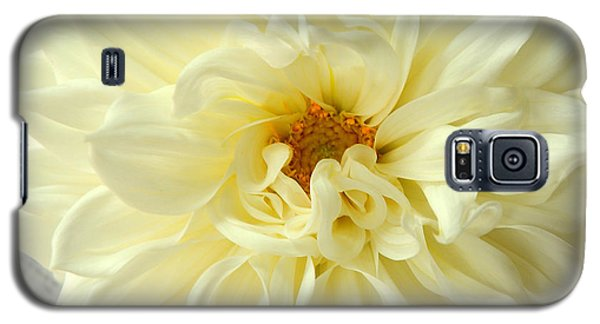 Galaxy S5 Case featuring the photograph White Dahlia by Olivia Hardwicke