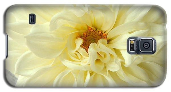 White Dahlia Galaxy S5 Case