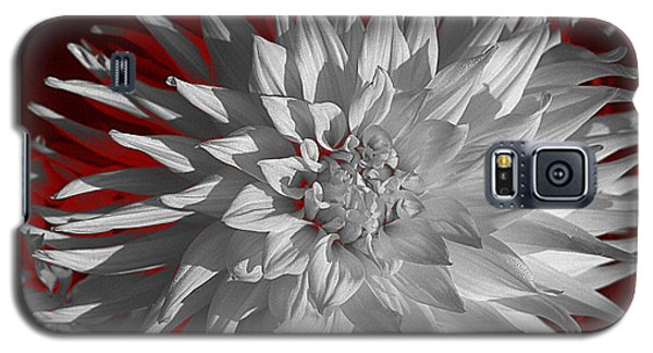 White Dahlia Galaxy S5 Case