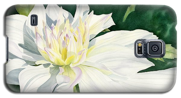 White Dahlia - Transparent Watercolor Galaxy S5 Case