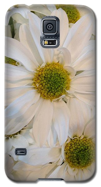 White Daisies Galaxy S5 Case
