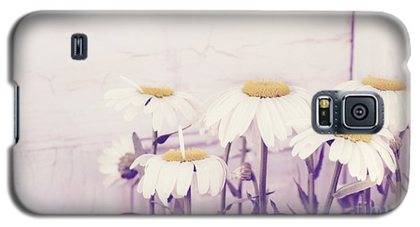 White Daisy Mums Galaxy S5 Case