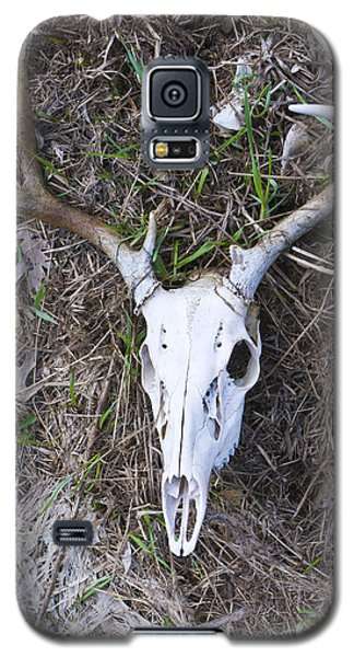 White Deer Skull In Grass Galaxy S5 Case