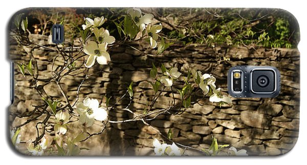 White Dogwood At The Stone Wall Galaxy S5 Case by Margie Avellino