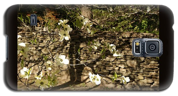 White Dogwood At The Stone Wall Galaxy S5 Case