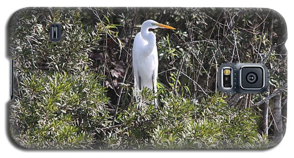 Galaxy S5 Case featuring the photograph White Egret In The Swamp by Christiane Schulze Art And Photography