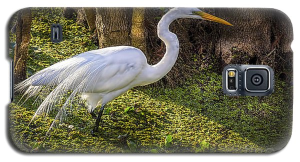 White Egret On The Hunt Galaxy S5 Case