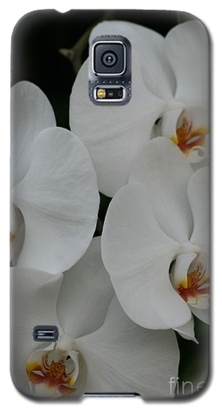 Galaxy S5 Case featuring the photograph White Elegance by Mary Lou Chmura