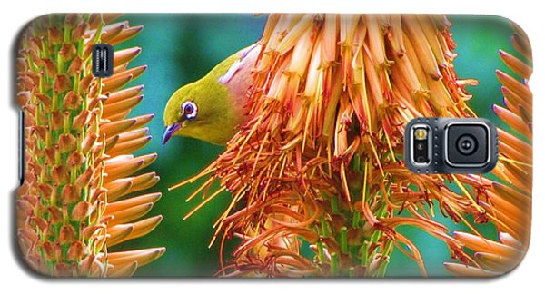 White-eye On Deer-horn Galaxy S5 Case