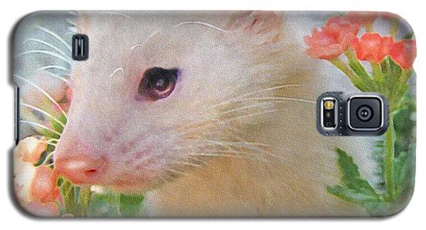 White Ferret Galaxy S5 Case by Jane Schnetlage