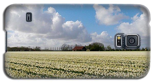 White Field Galaxy S5 Case