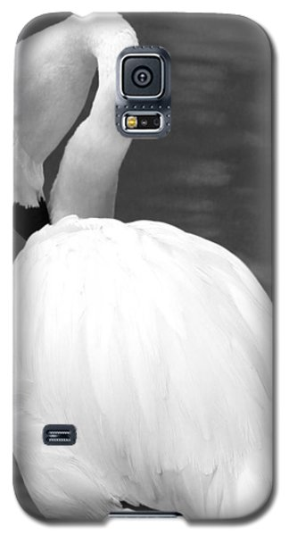 White Flamingo Galaxy S5 Case