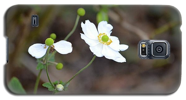 Galaxy S5 Case featuring the photograph White Flower by Alex King
