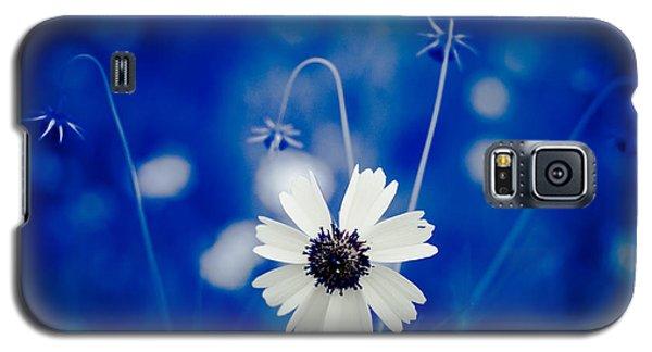 White Flower Galaxy S5 Case by Darryl Dalton