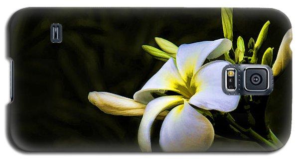 White Flower Galaxy S5 Case by Don Durfee