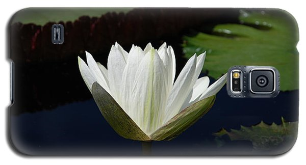 Galaxy S5 Case featuring the photograph White Flower Growing Out Of Lily Pond by Jennifer Ancker
