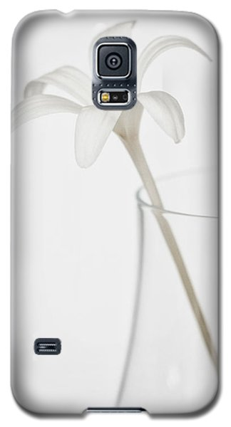 Galaxy S5 Case featuring the photograph White Flower In A Vase by Zoe Ferrie