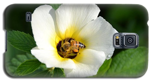 Galaxy S5 Case featuring the photograph White Flower- Nectar by Darla Wood