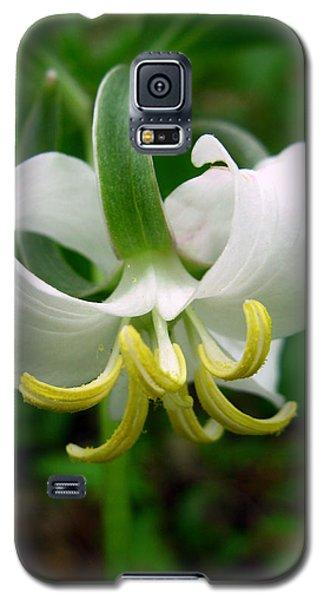 White Flowering Rose Trillium Galaxy S5 Case