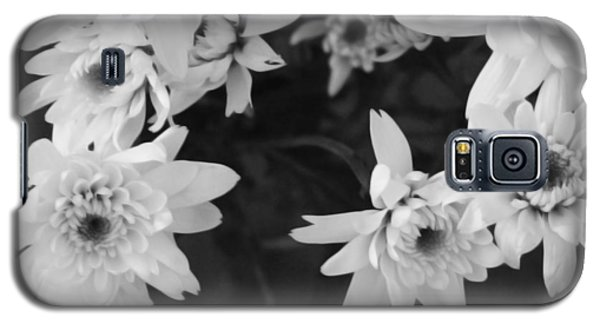 Daisy Galaxy S5 Case - White Flowers- Black And White Photography by Linda Woods