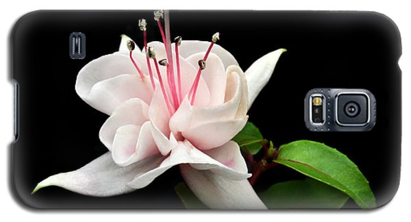 White Fuchsia. Galaxy S5 Case by Terence Davis